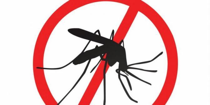 Beda demam dengue dan DBD: Penyebab, penanganan dan perawatan