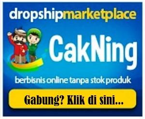berbisnis online tanpa stok produk