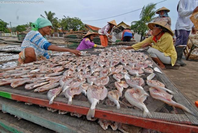 Unduh 40 Gambar Nelayan Menjemur Ikan Asin Terbaru
