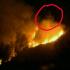 Penampakan mahluk aneh saat kebakaran di Hutan Gunung Lawu. (Facebook/Polet)